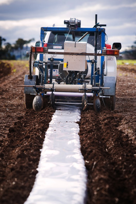 aying the degradable polymer film with the direct seeder